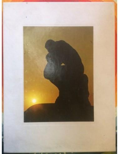 The world of Rodin Usado